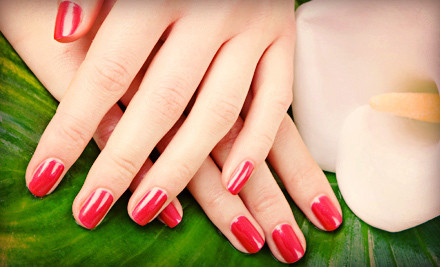 Manicure, Shellac Pedicure, or Full Set of Pink-and-White Solar Nails