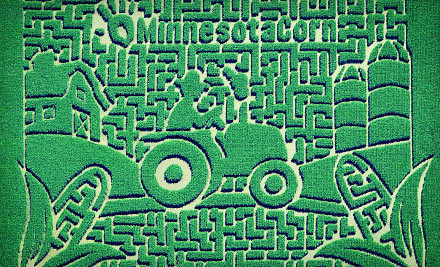 Minneapolis / St Paul: $26 for a Corn Maze Adventure for Four at Sever's Corn Maze (Up to $52 Value)