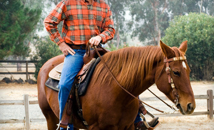 Two 1-hour horseback riding lessons - Dream Horse Academy Training and Lessons in Wylie
