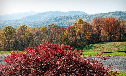 Up to 55% Off Inn Stay in the Blue Ridge Mountains