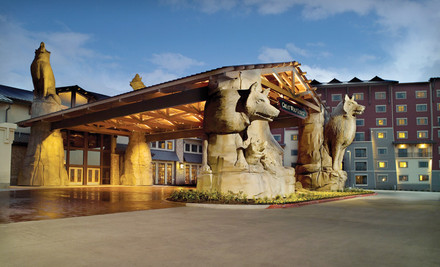 Austin: One-Night Stay with Six Water-Park Passes at Great Wolf Lodge Grapevine in Greater Dallas, TX
