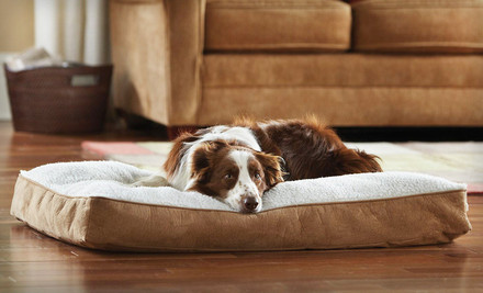 $29.99 for an Animal Planet Large Sherpa Memory-Foam Dog Bed. Free Shipping and Returns